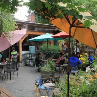 Tin Shed Café Garden